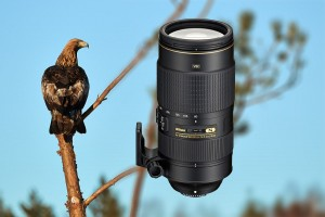 Nikon AF-S 80-400 mm f/4,5-5,6 G ED VR Test