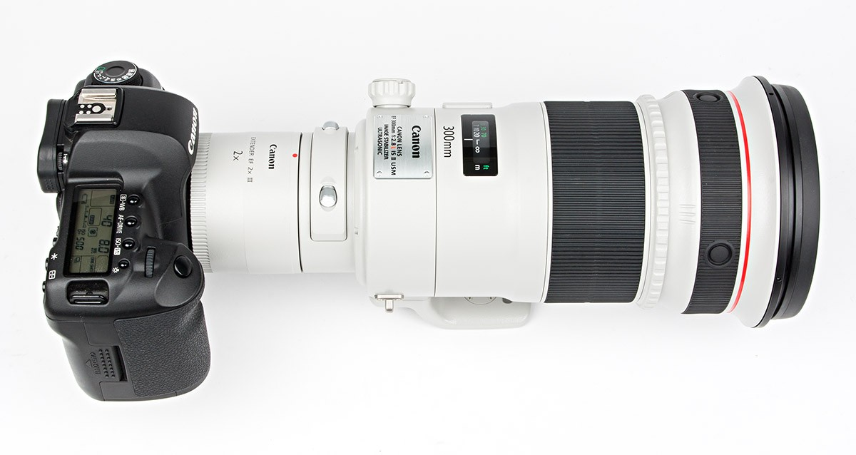 Canon EF 300 mm F2,8 L IS II USM + Canon Extender EF 2x III Test