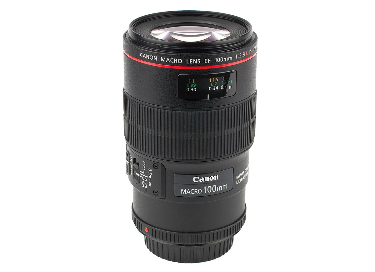 Canon EF 100 mm f/2,8 L IS USM Macro Test makroobjektiv