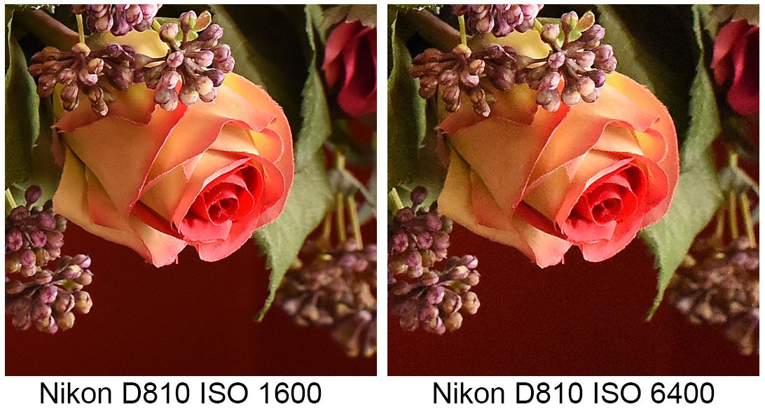 Nikon D810 test brus ISO 1600 & 6400