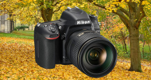 Test: Nikon D750 – en suverän systemkamera för allroundbruk