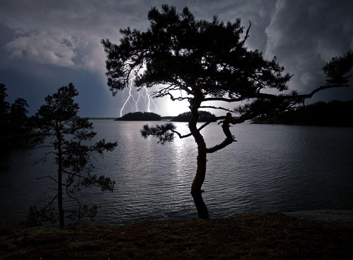 naturfotograf Benjamin Pöntinen Natur 2015 Vårgårda