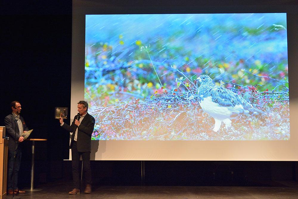 Vårgårda naturfotofestival 2015 naturfotograf Markus Varesvuo tjäder, fjällripa