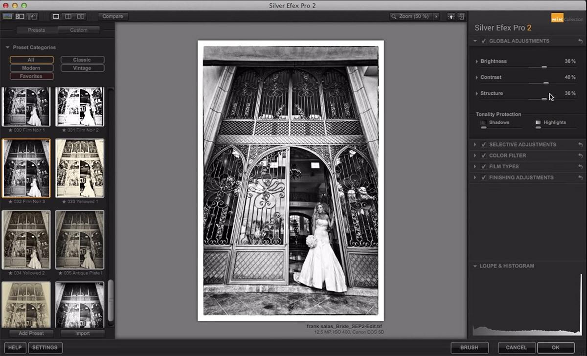 Nik Silver Efex Pro 2 programvara bildbehandling svartvitt julklappstips