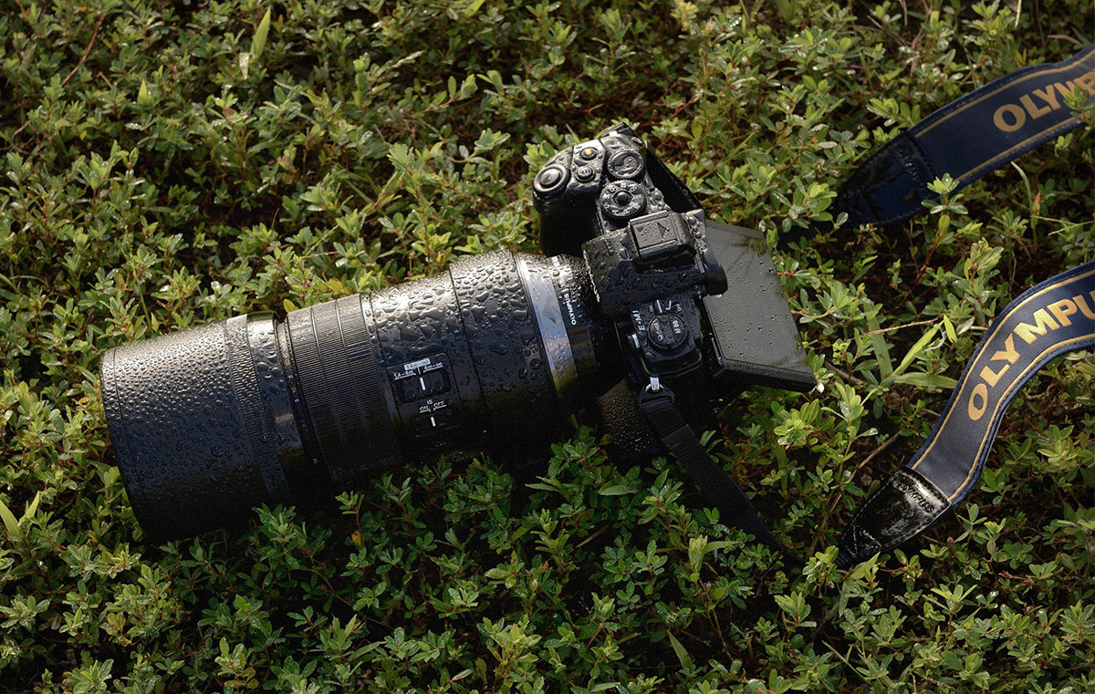 Olympus 300 mm f/4 IS Pro vädertätat professionellt teleobjektiv