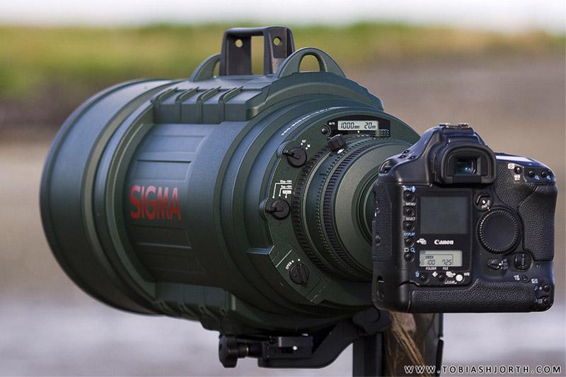 Sigma EX 200-500 mm f/2,8 APO DG HSM supertelezoom foto Tobias Hjorth