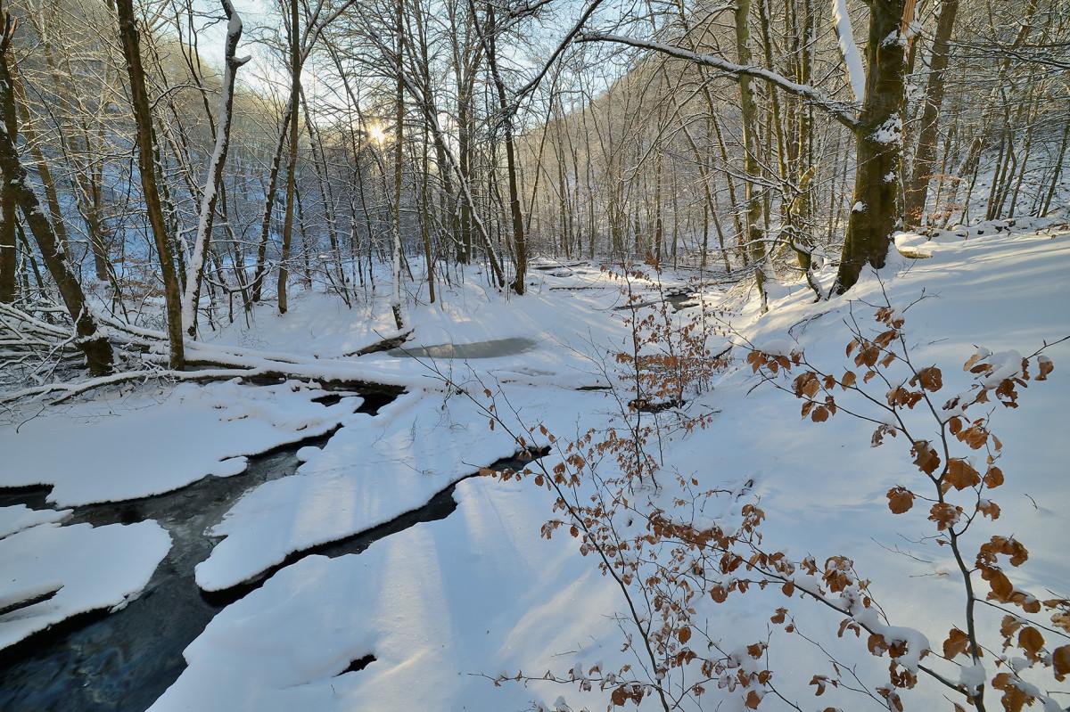 Vinter naturfotografering Skäralid Christian Nilsson bloggar Objektivtest.se