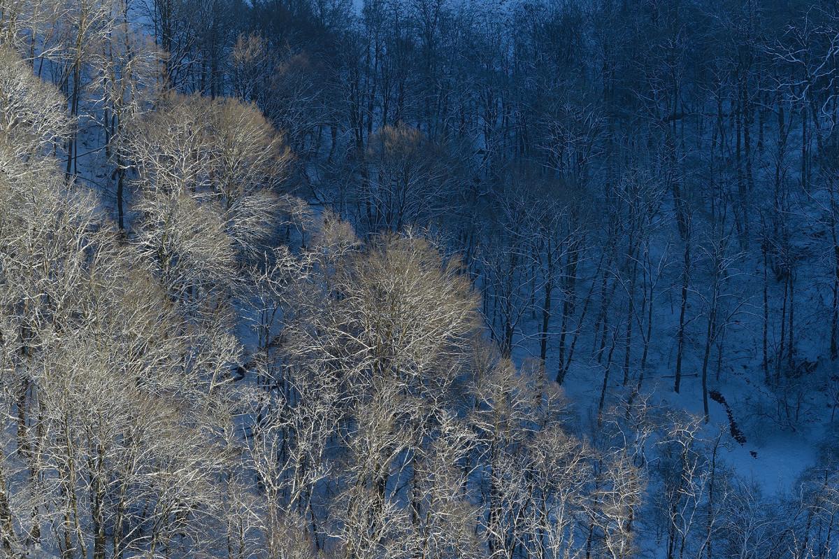 Vinter utsikt Kopparhatten Skäralid Söderåsens nationalpark rimfrost foto Christian Nilsson blogg Objektivtest.se