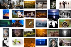 Fototävlingen är avslutad – tack alla deltagare!