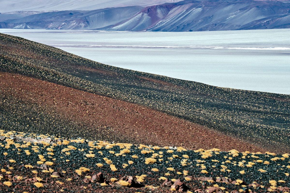 Tuvor med ichu gräs i bakgrunden en saltsjö i Puna de Atacama, Andernas högland
