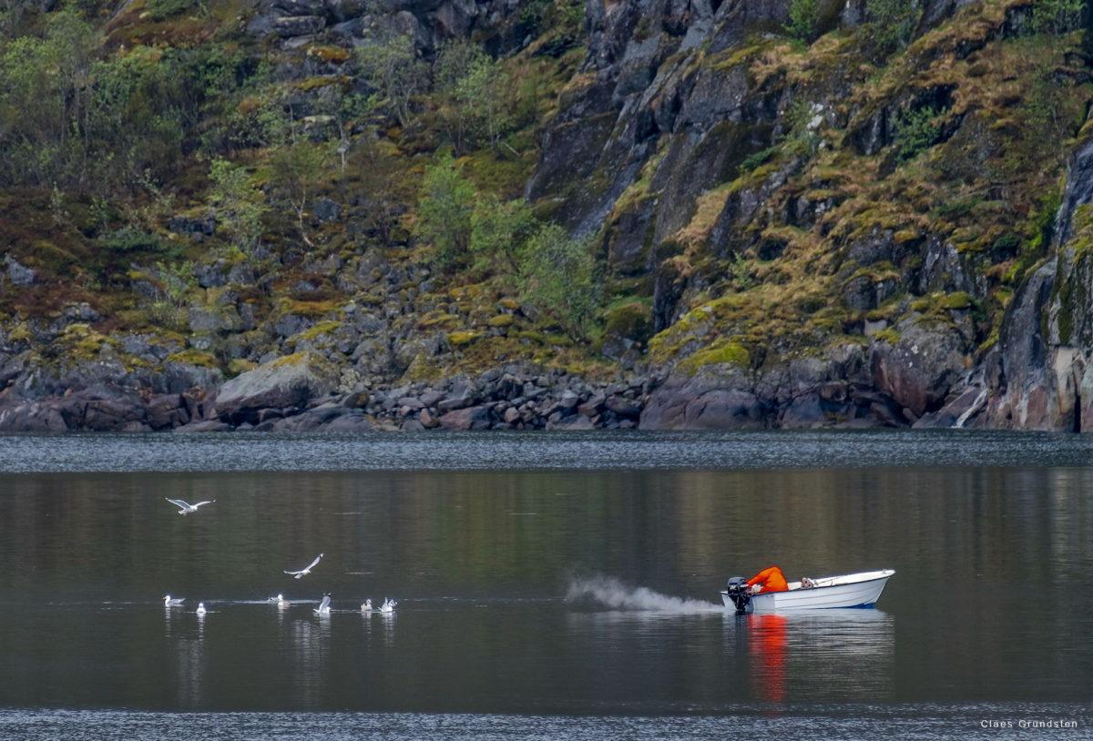 Claes Grundsten blogg fotokurs Lofoten Norge 09