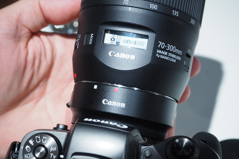 Canon EF 70-300/4-5.6 IS II USM