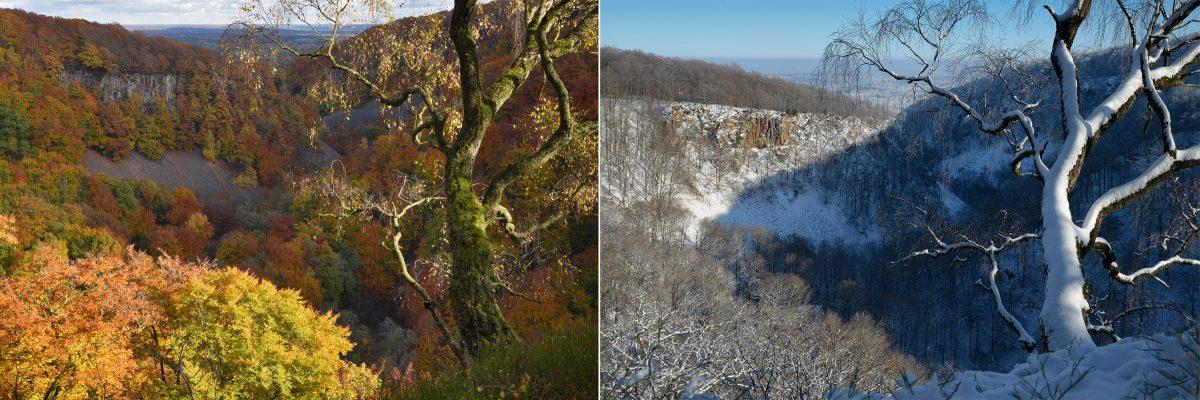 skaralid-host-vinter-naturfotografering-foto-christian-nilsson-objektivtest-se