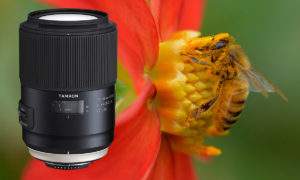 Test: Tamron SP 90 mm f/2,8 Di VC USD Macro version II