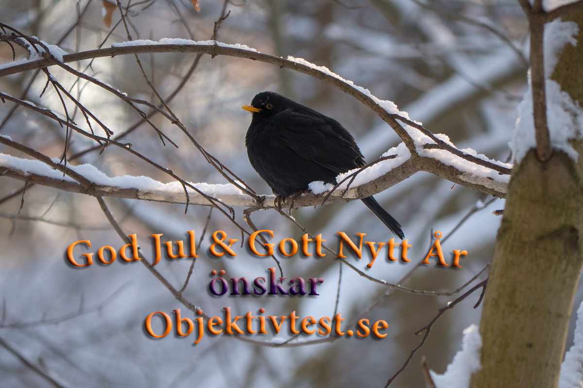 god jul önskar Objektivtest.se