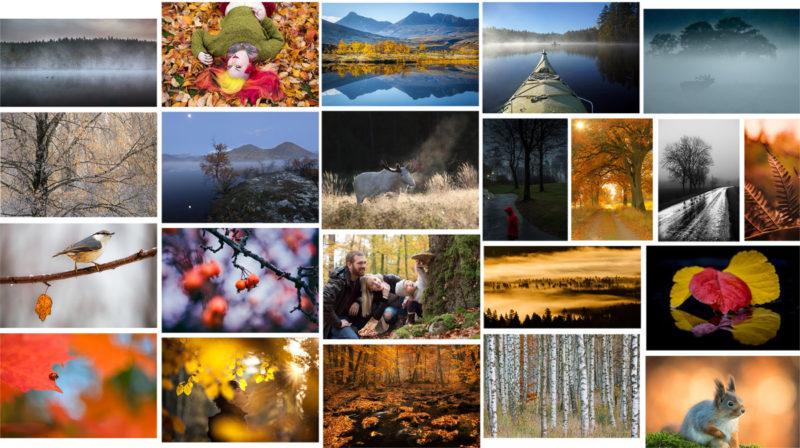 Härlig mix av varmt och kallt i årets sista fototävling!