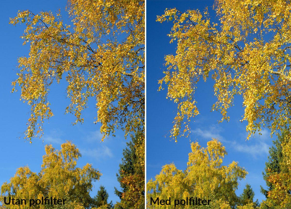 bildexempel med och utan polarisationsfilter