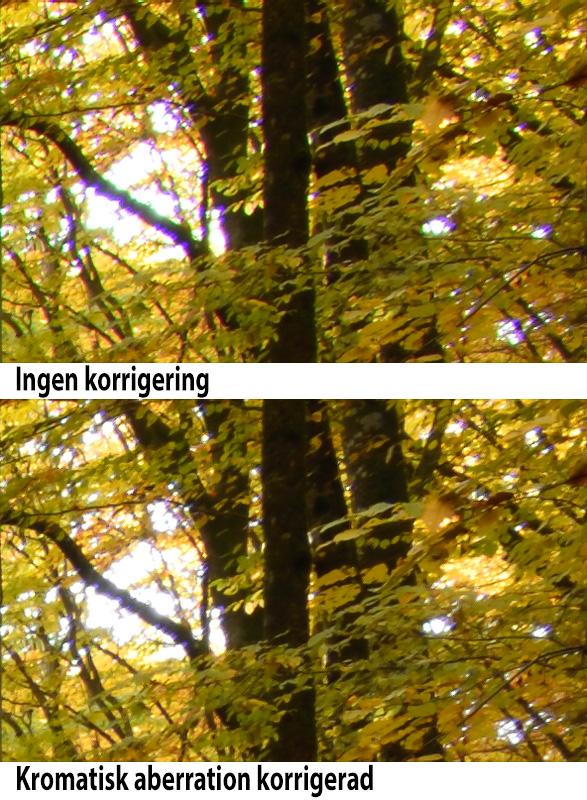 Nikon AF-S 24-70 mm f/2,8 E ED VR test kromatisk aberration utsnitt foto Christian Nilsson