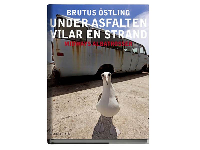 Brutus Östling fotobok Under asfalten vilar en strand - Midways albatrosser