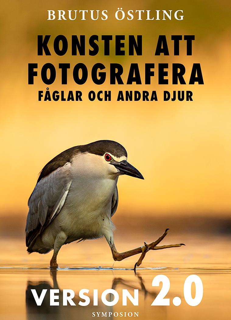 Fotobok Konsten att Fotografera Fåglar och Andra Djur ver 2.0 av Brutus Östling
