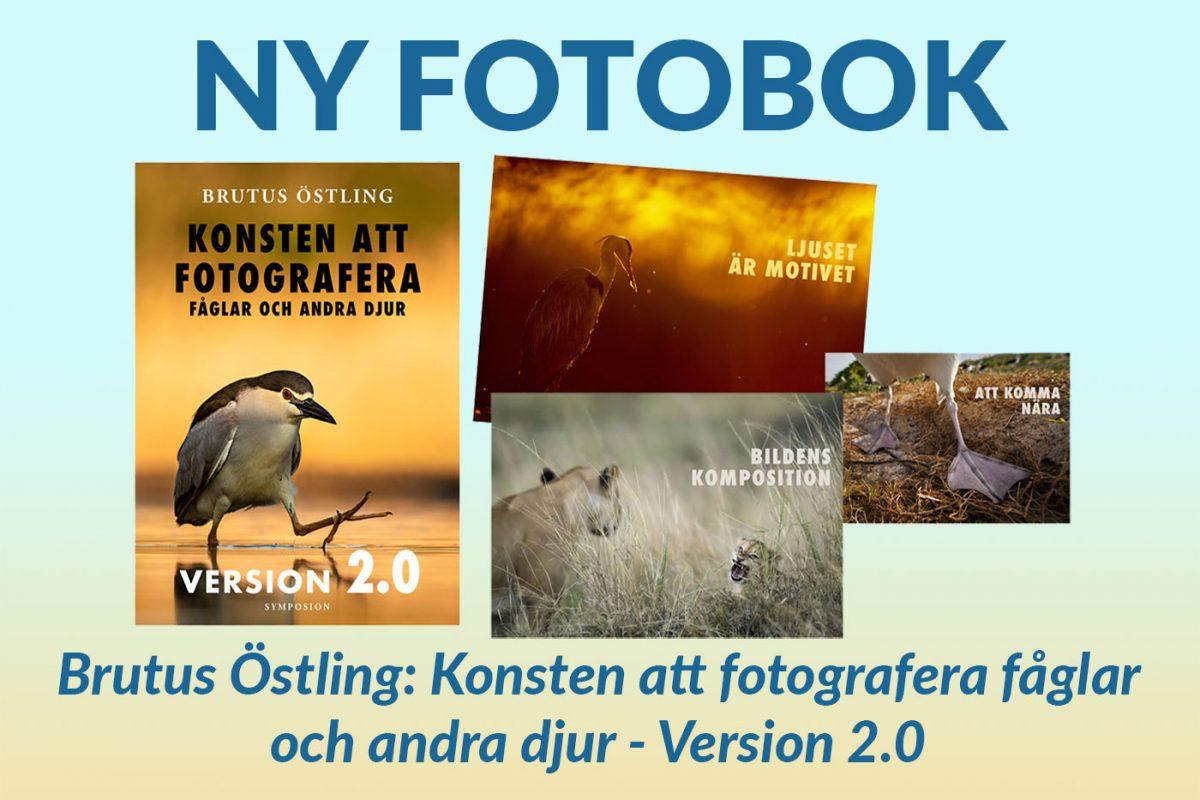 Konsten att fotografera fåglar och andra djur - version 2.0 av Brutus Östling fotobok och naturfotografering